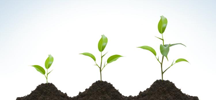3 Círculos que determinarán tu nivel de liderazgo